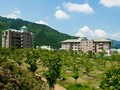 南木曽の大型ホテルの写真