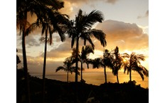 株式会社スタッフエージェントの鹿児島、ホテル・宿泊施設サービス関連職の転職/求人情報