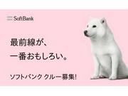 ソフトバンクグループ合同募集 神奈川県厚木市林のアルバイト