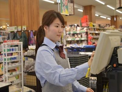 生鮮市場TOP 増尾台店のアルバイト情報