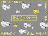 ドコモ光ヘルパー/高田馬場店/東京のアルバイト