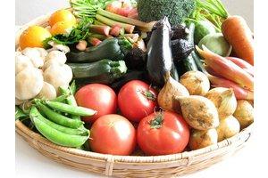 野菜菜好きな人集まれ~♪