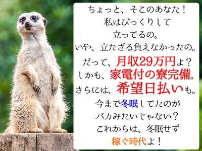 日本マニュファクチャリングサービス株式会社B03/hiro120420の求人画像