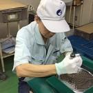 株式会社ビート 大阪北支店のアルバイト情報