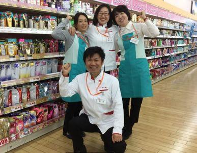 クスリのアオキ 符津店のアルバイト情報