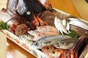 魚盛 神田東口店のアルバイト情報