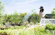 株式会社フジショー ガーデン本舗のアルバイト情報