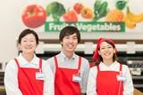 西友 永山店 0134 D レジ専任スタッフ(10:00~18:00)のアルバイト