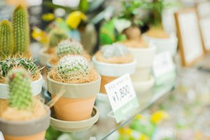 販売スタッフ募集中!手作りの温もりある商品に囲まれてお仕事しませんか。