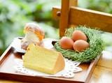 たまご村ケーキ工房 ヴィラドゥッフのアルバイト