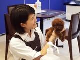 ペットプラス イオンモールKYOTO店(正社員)のアルバイト