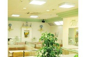 《軽食・喫茶店でのお仕事》お客様もスタッフも心地よい空間を目指して…☆