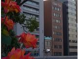 トモエ興産株式会社(グランクリュ 大阪北浜)のアルバイト