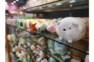 6月22日、ジョイフル本田千代田店に雑貨ショップがニューオープン!