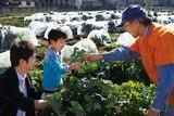 調布深大寺内野体験農園のアルバイト