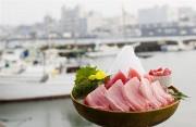 駿河郷土料理 なすび総本店のアルバイト情報