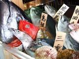 地魚屋台 浜ちゃん 渋谷店のアルバイト