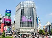 渋谷の真ん中にあるキレイなオフィス