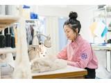 ビックママ 渋谷109店のアルバイト