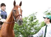 乗馬クラブクレイン 東広島のアルバイト情報