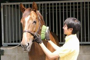 『馬や動物が好き』で『人と話すことが大好きな方』