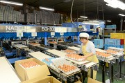 黒富士農場GPセンターのアルバイト情報