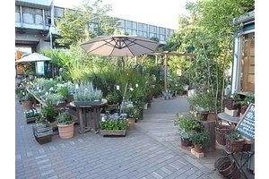 ◆植物に興味のある方、接客・販売が好きな方、 未経験でも大歓迎です◆