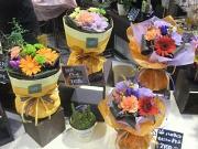 作れるお花の数も多い!お花の勉強にピッタリです