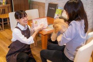 ペットプラス 神戸三宮店(フリーター(業界経験者))・ペットショップスタッフのアルバイト・バイト詳細