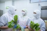 新宿区落合 学校給食 管理栄養士・栄養士(87627)のアルバイト