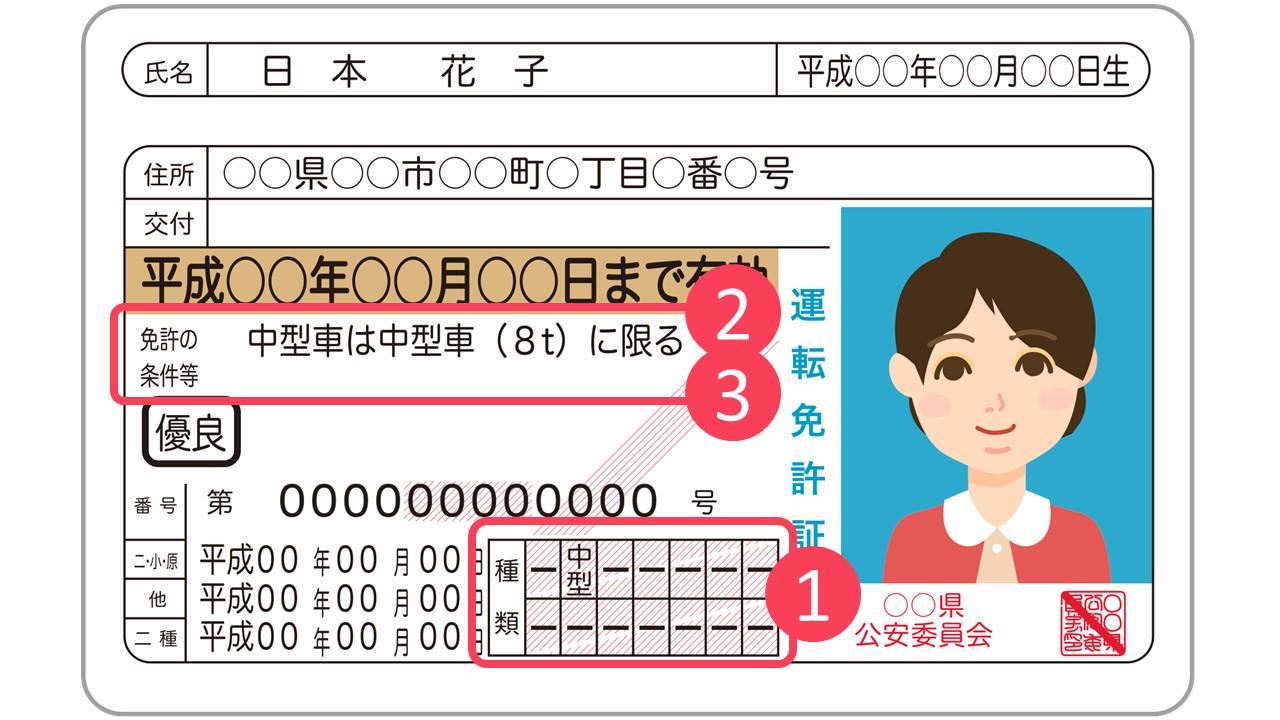 免許証全体図